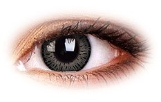 Elegance Grey | Natural Color Contact Lenses