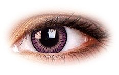 Elegance Pink | Violet Contact Lenses