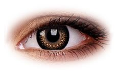 ColourVue Eyelush Brown Contact Lenses