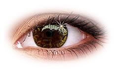 ColourVue Star and Jewel Gold Contact Lenses