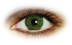 Freshlook Colors Green | Natural Colour Contact Lenses