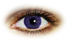 Freshlook Colors Violet | Natural Color Contact Lenses