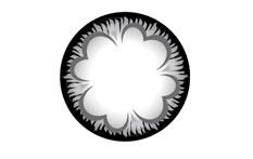 Neo Cosmo Dali&Circle N535 Grey Clover contact lenses