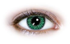 2 Tone Green (N222) | Natural Colour Contact Lenses