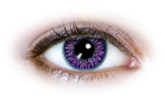 2 Tone Violet (N223) | Natural Colour Contact Lenses