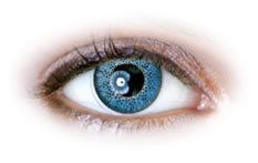 Blue (N231) | Natural Color Contact Lenses