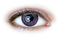 Violet (N233) | Colour Contact Lenses