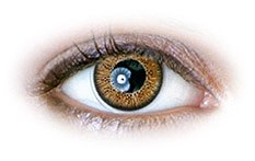 Brown  (N234) | Natural Color Contact Lenses