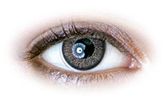 Grey (N235) | Natural Colour Contact Lenses