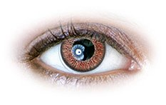 Hazel (N237) | Natural Color Contact Lenses