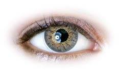 Neo Cosmo - 3 Tone Grey Contact Lenses (N325)