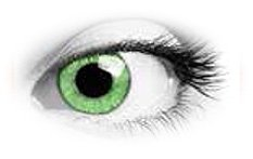Queens Oros Warm Green | Natural Colour Contact Lenses