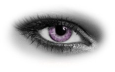 Queens Solitaire Violet | Colour Contact Lenses