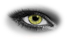 Queens Solitaire Yellow | Natural Color Contact Lenses