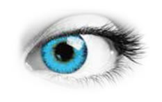 Queens Trilogy Blue Toric | Natural Colour Contact Lenses
