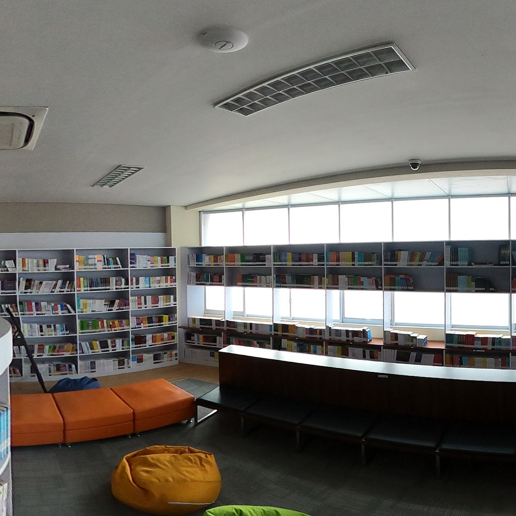 Library-Reading Area