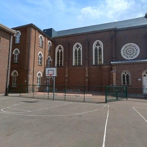 Basketvelden