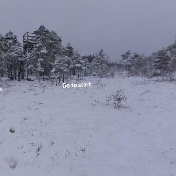 Tundra/End