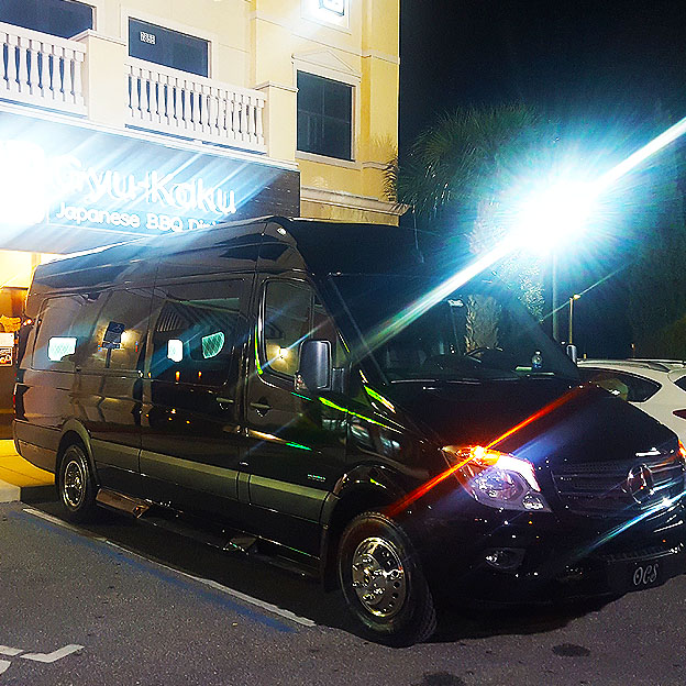 Limo Night on the Town - Orlando Limousines