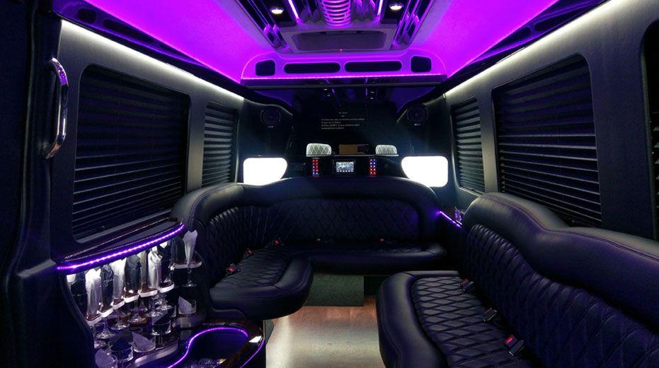 12 Passenger Sprinter Limousine Disney