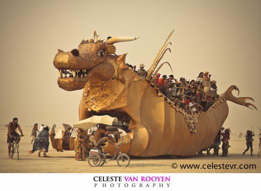 Celeste van Rooyen 15