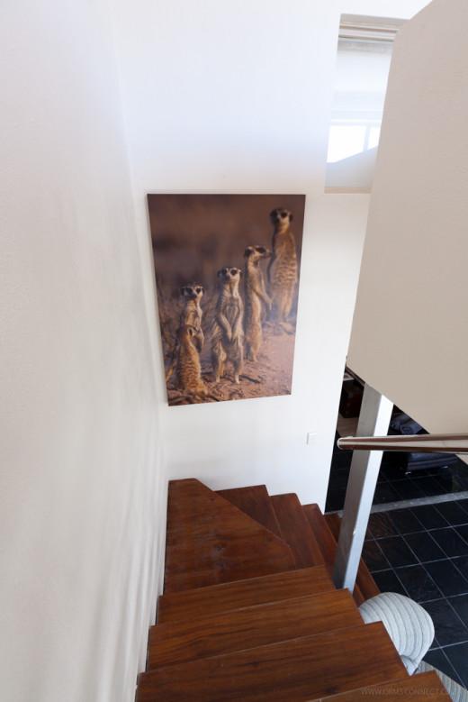 Villa Egret 10