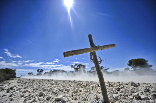 Bloukopkoggelmander voorspel dalk droogte in die Kalahari