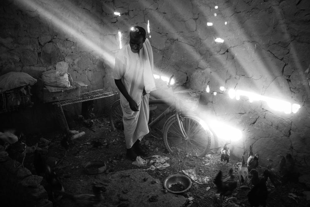 Aswan Hussien Chickens Ramadan Dinner EGYPT