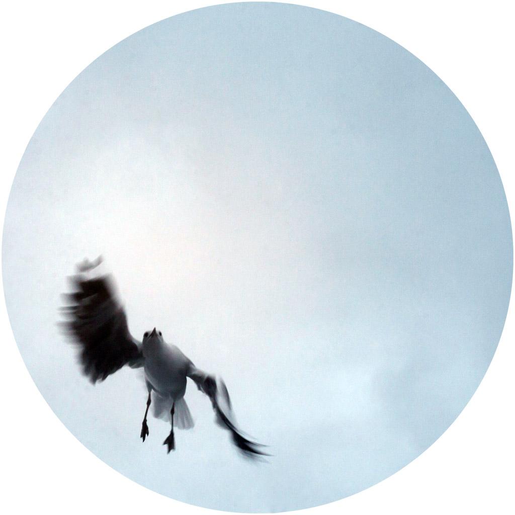 kate-davies-08