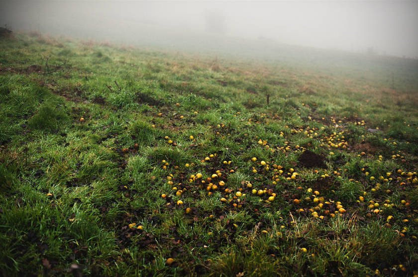"""Black Seasons"" Photography Project by French Photographer Julien Coquentin"