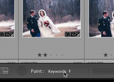 Lightroom Workflow: An easy way to keyword your photographs