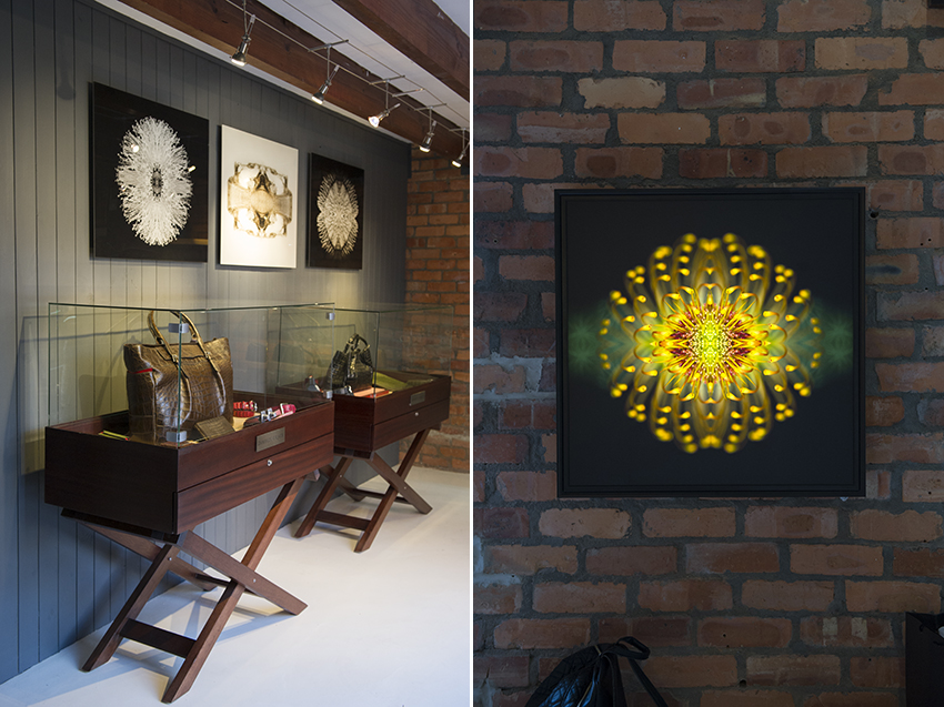 Orms Print Room and Framing Case Study: Luxury Africa