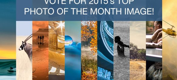 Choose your favourite Photo of the Month image for 2015!