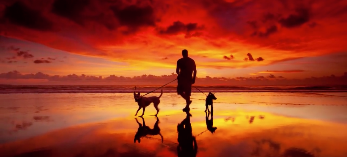 How to capture the perfect sunset photo every time.