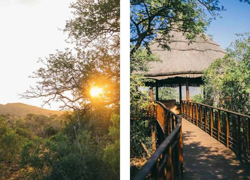 Thanda Private Game Reserve, by Melissa Delport