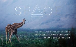 SPACE Exhibition: Another Opportunity to Exhibit Your Photographs!