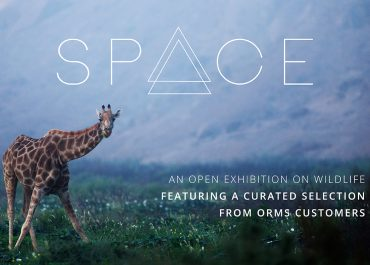 Wildlife Space Exhibition | March 2017