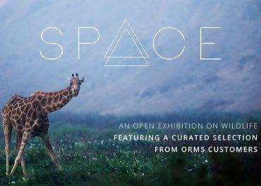 Wildlife Space Exhibition | March 2017
