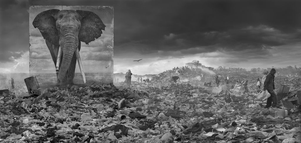 Inspiration: The Exceptional Work by Nick Brandt