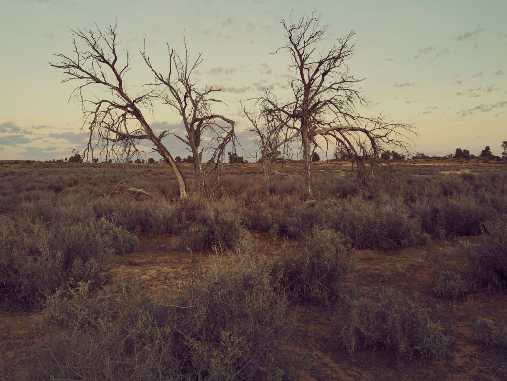 """Photographic Inspiration: """"The Remnants"""" featured on Orms Connect"""