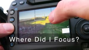 Getting Sharp Focus from Front to Back: A 3-Way Focus Test