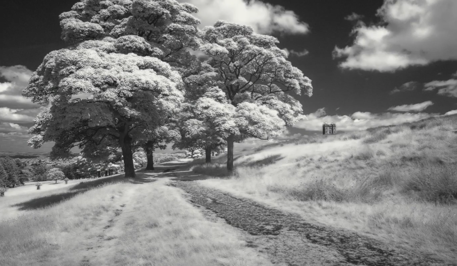 The Easy Guide to Infrared Photography
