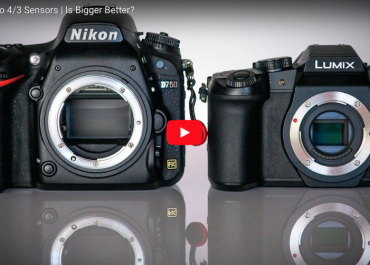 Full Frame vs Micro 4/3 Sensors | Is Bigger Better?