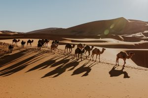 Travel Photography: Morocco by Vincent Brod