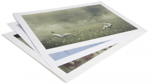 Professional Archival Fine Art Paper: Everything You Need To Know
