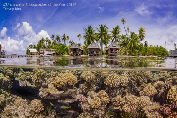 The Underwater Photographer of the Year 2019 results are in, and we're bringing you a look at this list of images shedding light on the darkest of the deep.