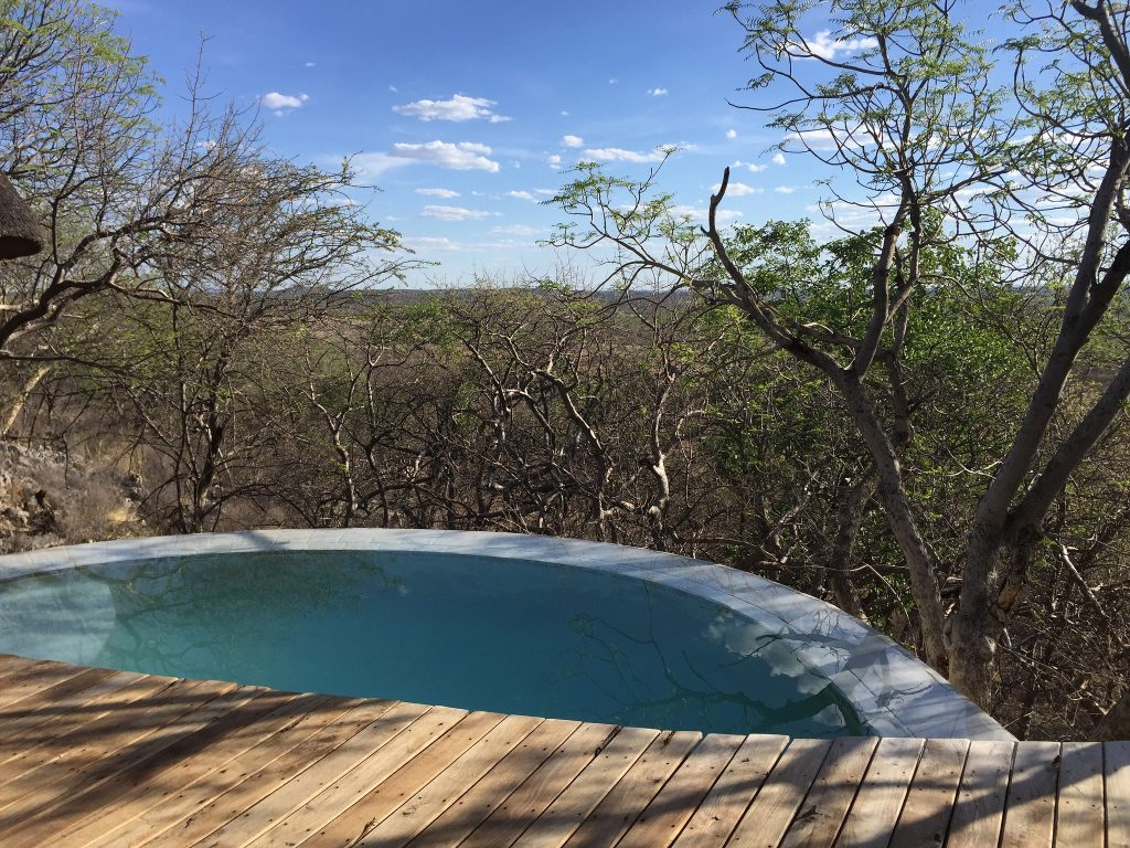 Private plunge pools at Little Ongava
