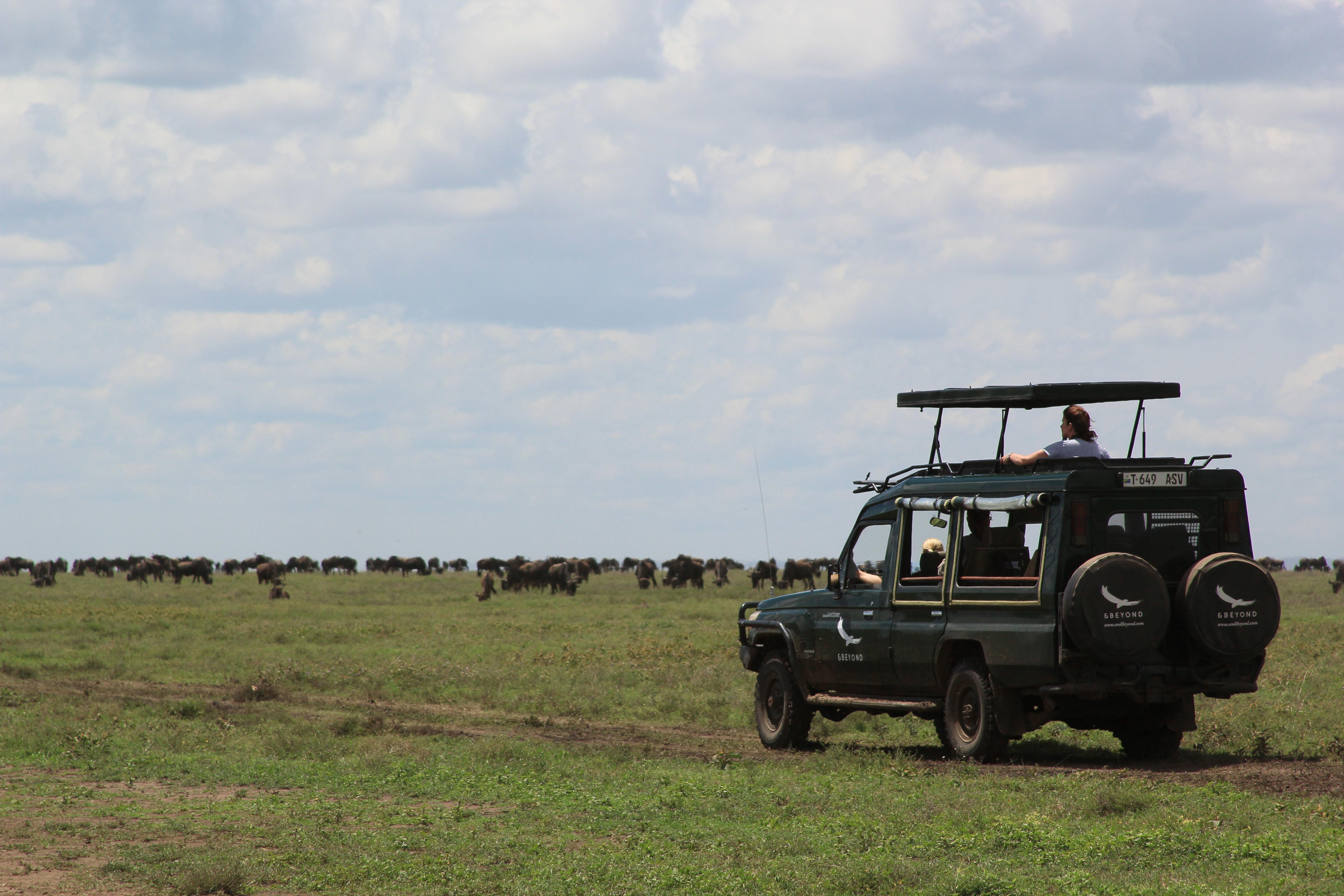 Serengeti G