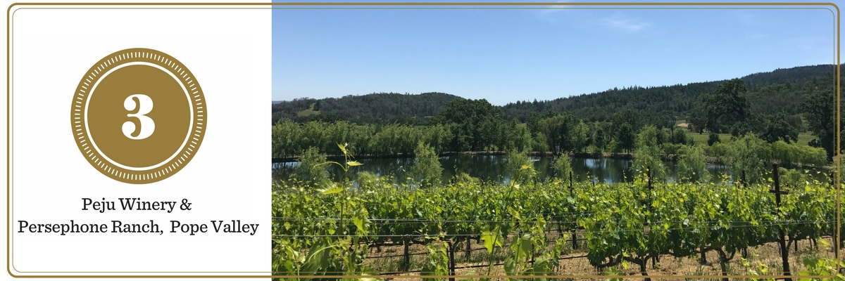 California Wine Tasting: Pope Valley and Peju Winery