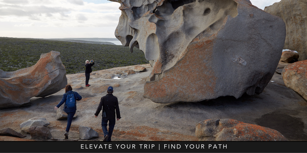 elevate your travel experiences